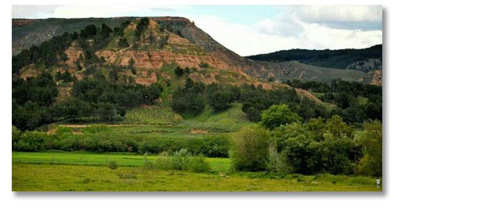Portada Posts Plataforma Valle del Henares para la defensa del medio natural
